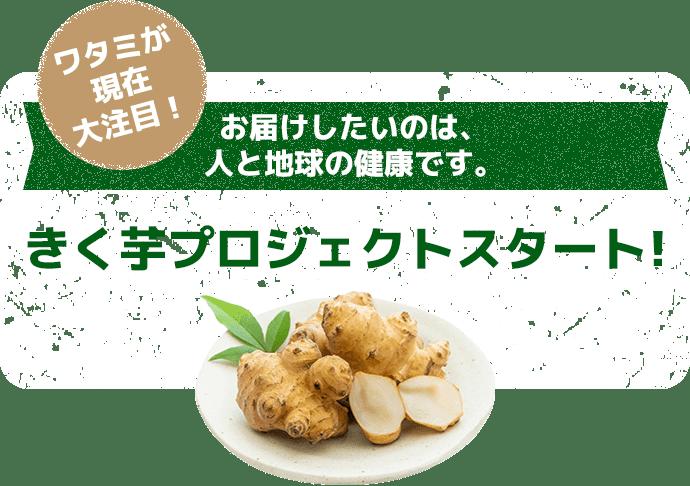 きく芋プロジェクトスタート!