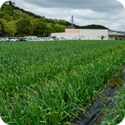 丹波農場(兵庫県)