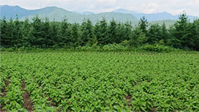 倉渕農場(群馬県)