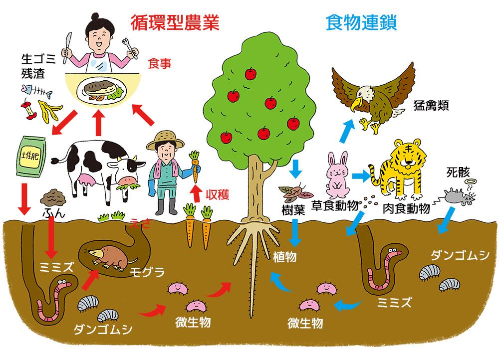 食物連鎖を活かした循環型農業