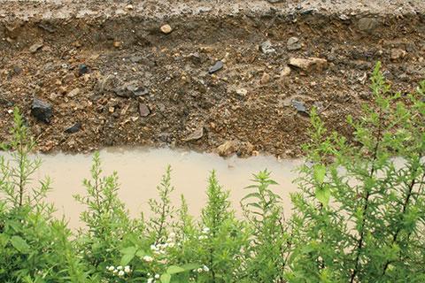 粘土質の土