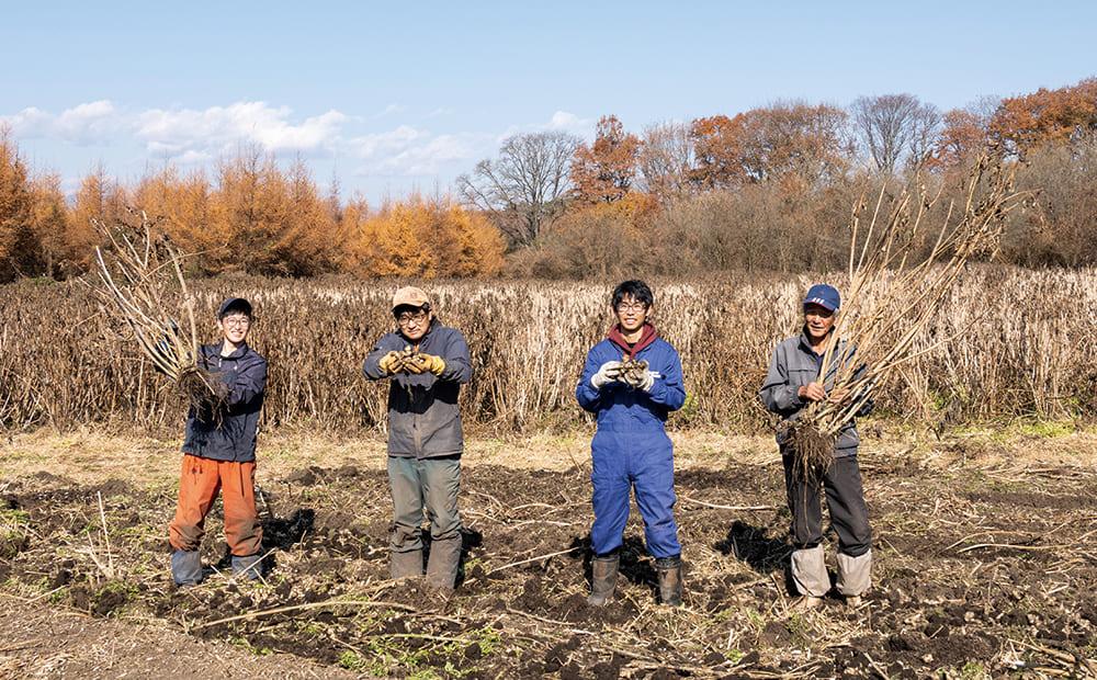 【番外編】<ワタミきく芋プロジェクト> オーガニックの良さを伝えたい! きく芋をついに収穫