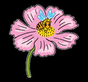 花粉を運び、受粉の手助けをする